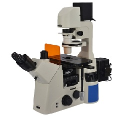BS-2095F Research Fluorescent Inverted Microscope