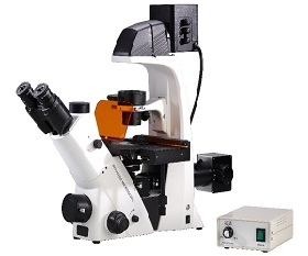 BS-2093BF(LED) Inverted Biological Fluorescent Microscope