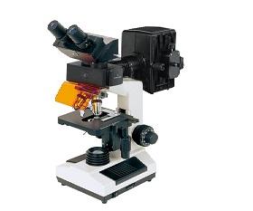 BS-2030FB Fluorescent Biological Microscope
