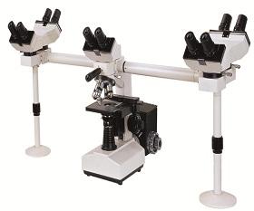 BS-2030MH10 Multi-Head Microscope