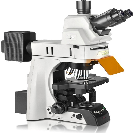 BS-2083F Research Biological Fluorescent Microscope