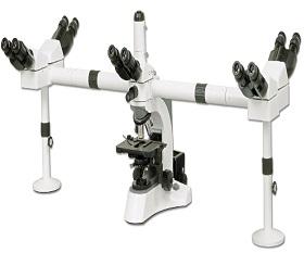 BS-2080MH10 Multi-Head Microscope