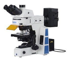 BS-2082F Research Biological Fluorescent Microscope