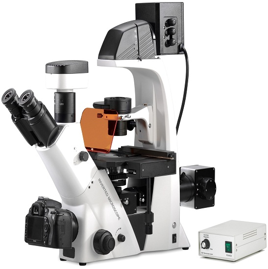 BS-2093BF Inverted Biological Fluorescent Microscope